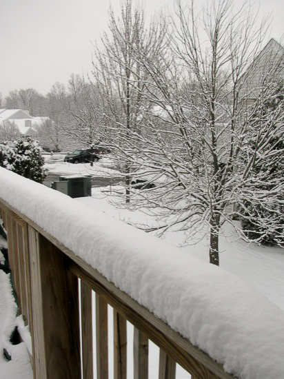 This pic is from 2010 (click pic for post). Much easier than actually going outside.