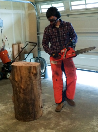 The Chainsaw Carving Master